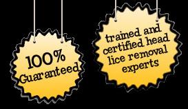Head Hair Lice Removal Guarantee East Portland, OR
